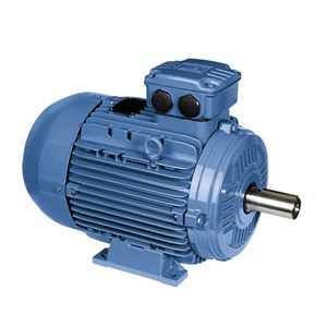 0.55kw 2 Pole Foot Mounted Motor