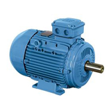 Buy WEG Cast Iron Motors Online